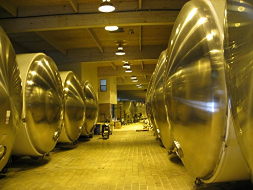 domaine-chandon-produces-california-sparkling-wine-in-these-big-shiny-vats