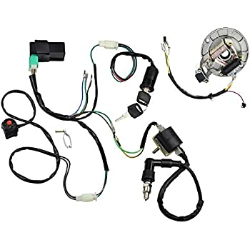 pit bike wiring harness tcr jenouson uk Leaf Blower Wiring Diagram amazon cisno kick start dirt pit bike wire harness wiring loom rh amazon pit bike stator wiring 125cc pit bike wiring harness