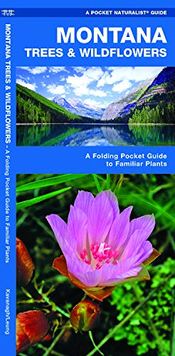 Montana Trees & Wildflowers: A Folding Pocket Guide to Familiar Plants (Wildlife and Nature Identification)