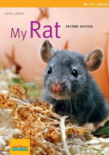 Read Online My Rat (My Pet Series) PDF