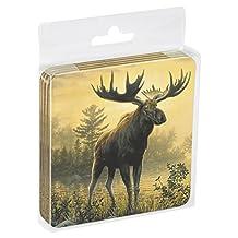 Tree-Free Greetings Set Of 4 Cork-Backed Coasters, 3.75x3.75-Inch, Moose Themed Wildlife Art (52522)