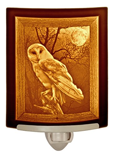 Ceramic Night Light - The Owl - Curved Porcelain Lithophane Night Light