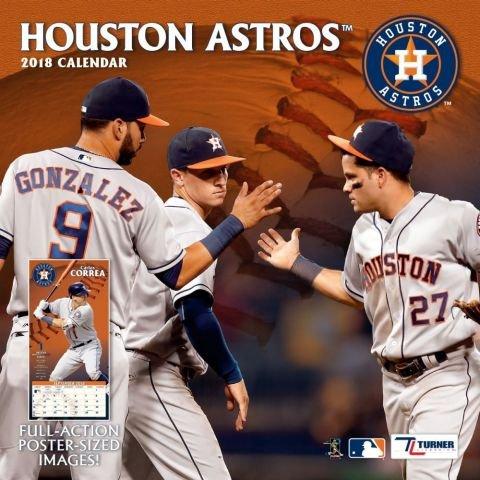 2018 Houston Astros Baseball TEAM Wall (12 Team Wall Calendar)