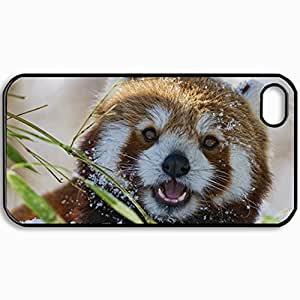 Personalized Protective Hardshell Back Hardcover For iPhone 4/4S, Red Panda Design In Black Case Color