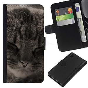 eJoy---La carpeta del tirón la caja de cuero de alta calidad de la PU Caso protector - Sony Xperia Z1 L39 - --Manx American Shorthair Cat Sleeping