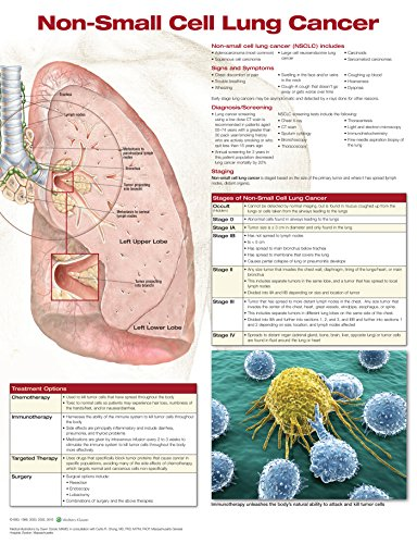 Non-Small Cell Lung Cancer ()