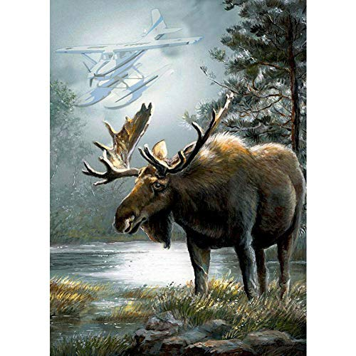 Kit Moose - DIY 5D Diamond Painting by Number Kit,Crystal Rhinestone Diamond Embroidery Paintings Cross Stitch for Home Wall Decor Animal Cute Moose,11.8X15.7Inch