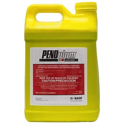 Amazon com: BASF Pendulum 3 3EC Herbicide 2 5 Gallon