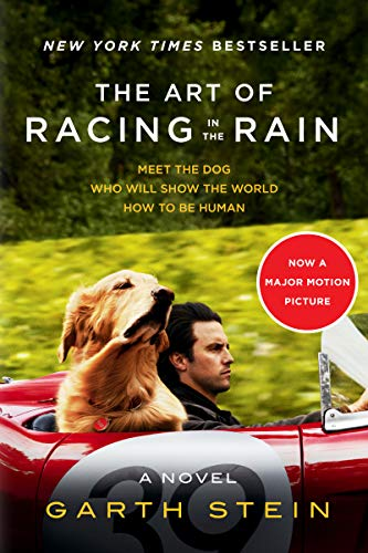 The Art of Racing in the Rain Ti...