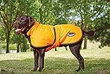 Weatherbeeta Reflective Parka 300D Deluxe Dog Coat Orange 26'