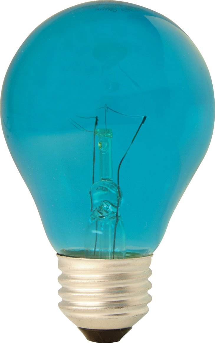 GE Lighting 22732 25 Watts Specialty A19 Incandescent Light Bulb, Teal Glass
