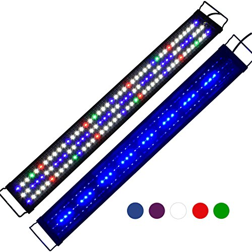 Led Saltwater Lighting in US - 4