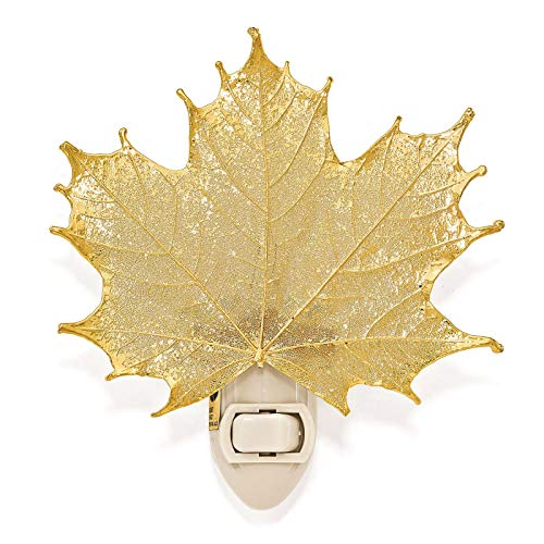 24k Gold Dipped Sugar Maple Leaf Nightlight in Gift Box