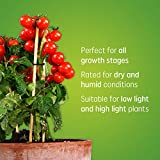 GE BR30 LED Grow Lights for Indoor Plants, Full