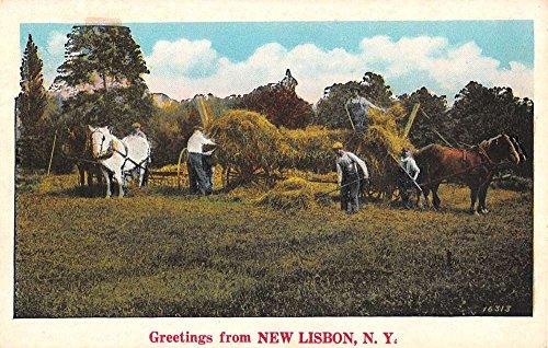 New Lisbon New York Hay Horse Cart Farm Greeting Antique Postcard K92576