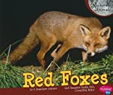Red Foxes (Pebble Plus: Nocturnal Animals) by Judith Angelique Johnson (2011) Paperback