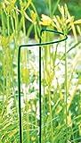 24 Pflanzenstützen (Strauchstützen) im Set - 60 x 35 cm - Buschstütze - Strauchstütze - Pflanzenständer