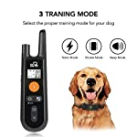 Dog Training Collar - Rechargeable Dog Shock Collar w/ 3 Training Modes, Beep, Vibration and Shock, 100% Waterproof Training Collar, Up to 1000Ft Remote Range, 0~99 Shock Levels Dog Training Set from DOG CARE