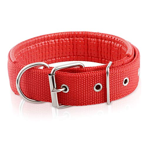 - Cutypet Basic Classic Nylon Adjustable Pet Dog Collars for Cats Puppy Small Medium Large Dogs, Training Collar, Premier Pet Collar for Large Medium Female and Male Dogs (Red/L)