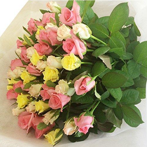 全6色から選べるバラの花束30本 バラギフト専門店マミーローズの豪華なバラの花束(生花) (ミックス) バレンタイン B00SJ6R2OO ミックス ミックス