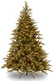 National Tree 9 ft. Frasier Grande Tree with Dual Color LED Lights
