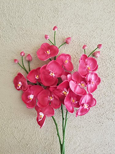FRP Flowers Artificial Real Touch Orchid Branch for Floral Arrangements, Office Decor, Bridal Bouquets (1 pc) (Fuchsia - Orchids Pink