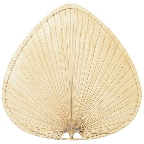 Palm Drill (Fanimation PAP2 Wide Oval Palm Palisade Blade, 18-Inch, Set of 8)
