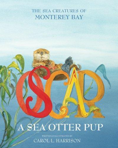 Oscar, A Sea Otter Pup: The Sea Creatures of Monterey Bay