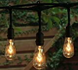outdoor pendant lights - 18Ft Outdoor Weatherproof String Lights with 12 Hanging Sockets & 7Watt ST40 Clear Bulbs, UL Listed E17 Base Vintage Edison Light String for Patio, Porches, Bistro, Backyard, Black Wire