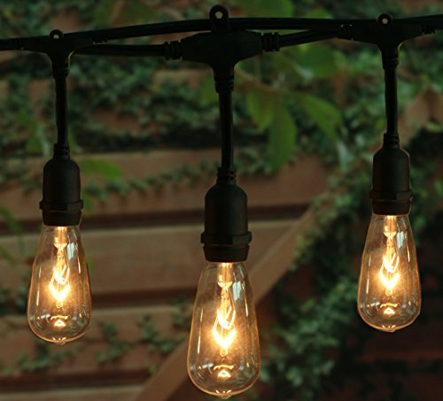 18Ft Outdoor Weatherproof String Lights with 12 Hanging Sockets & 7Watt ST40 Clear Bulbs, UL Listed E17 Base Vintage Edison Light String for Patio, Porches, Bistro, Backyard, Black Wire (Socket String)