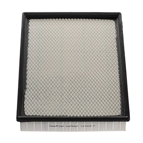 Champion CAP9401 Engine Air Filter Replacement