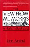 The View from Mt. Morris, John B. Sanford, 1569800189