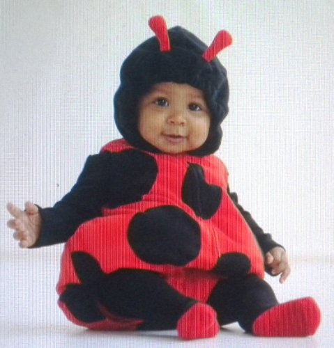 Carter's Baby Costume Lady Bug 3 Pieces Red Black NEW Halloween (3-6 months)