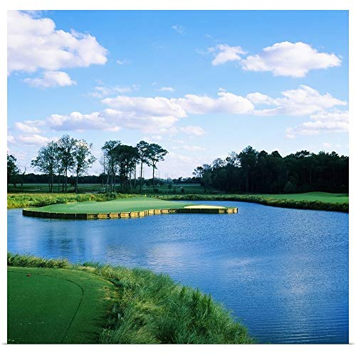 GREATBIGCANVAS Poster Print Entitled Pond in a Golf Course, Carolina Golf and Country Club, Charlotte, North Carolina by 16