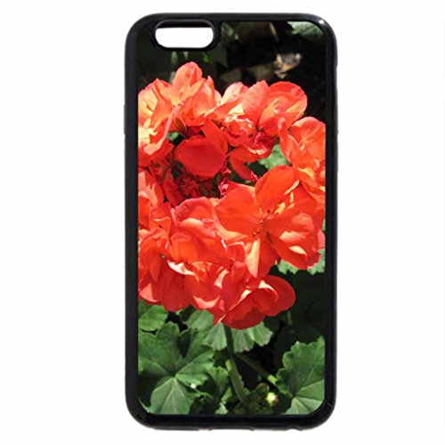 iPhone 6S / iPhone 6 Case (Black) Flowers on a picnic day at the park 20