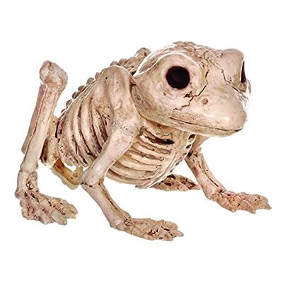Crazy Bonez Skeleton Frog: Toys & Games