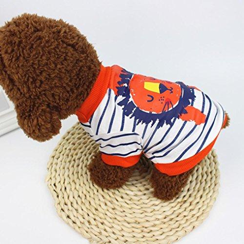 Angelof Vetement shirt De Habit Chien Orange D'été Lion Vêtements Moyenne Male Taille Chien Chat Pour Chiot Labrador Imprimé chat Rayé Nain Chihuahua T rrdzq