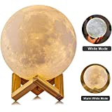 Best Buy Agm 3d Moon Lamp Touch Control Adjust Brightness Moon Light With Stand 2 Colorswarm Cool White Led 3d Print Moon Night Light With Usb Charging For Kids Gift Birthday Women59in
