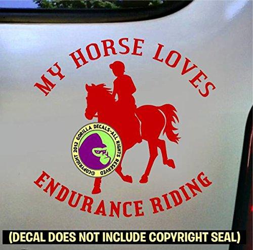 Endurance MY HORSE LOVES ENDURANCE RIDING Vinyl Decal Sticker D