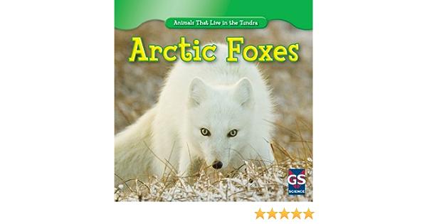 Arctic Fox Coton Bio Haut à manches longues-Maxomorra 7 8 9 10