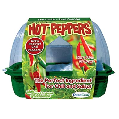 DuneCraft Hot Peppers Sprout and Grow Greenhouse: Toys & Games