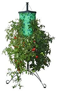 Felknor Ventures TT101101 Tomato Tree