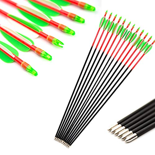 Tophunter Practice Target Arrows 26 Inch for Women Youth Kids Girls Archery Fiberglass Arrows 600 Spine for Recurve or Straight Long Bows Glued On Tips Nocks 12 Pack (Red Shaft)