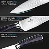 Soufull Chef Knife 8 inches Japanese Stainless Steel Gyutou Knife Professional Kitchen Knife with Ergonomic Handle