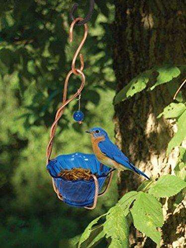 Songbird Essentials SEHHBBMW Copper Bluebird Mealworm Feeder (Set of 1)