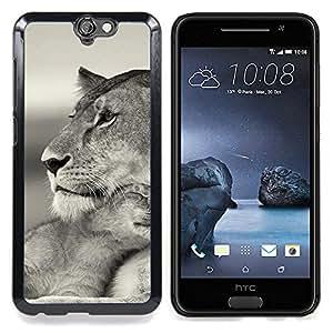 GIFT CHOICE / Teléfono Estuche protector Duro Cáscara Funda Cubierta Caso / Hard Case for HTC One A9 // Baby Mother Cub Lion Cute Black White //