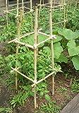 Hydrofarm HGBB2 2' Natural Bamboo Stake, pack of 25