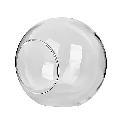 Amazon.com: Vases - 12pcs Glass Terrarium Container Hydroponics Plant Pot Aroma Oil Candleholder Multi Uses Home - Marbles Blue Decor Decorations Pastel ...
