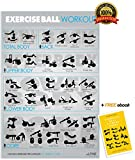 Alpine Fitness Stability Ball Exercise & Fitness Poster | Laminated Gym Planner for a Great Workout - Guide to Build Muscle & Strength