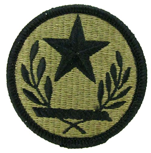 Texas Army National Guard OCP Patch - Scorpion W2